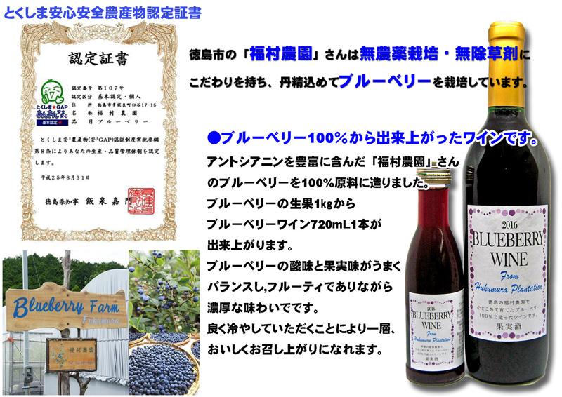 福村農園ブルーベリーワイン