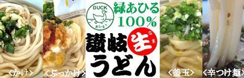 香川を代表するさぬきうどん用中力粉【緑あひる】を100%使った【讃岐生うどん】